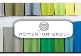 Momentum Group