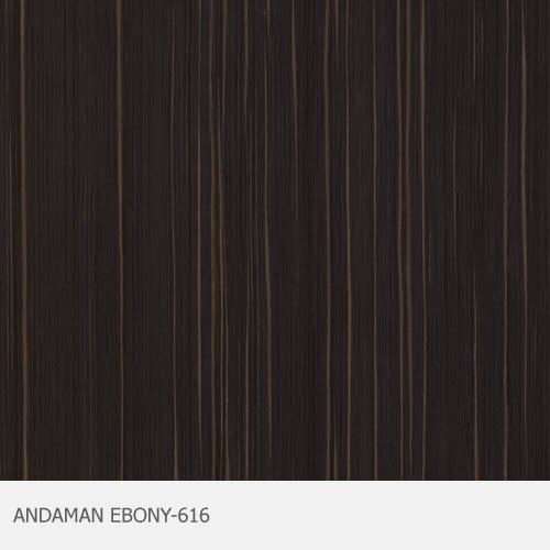 ANDAMAN EBONY-616