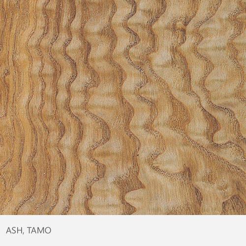 Ash Tamo