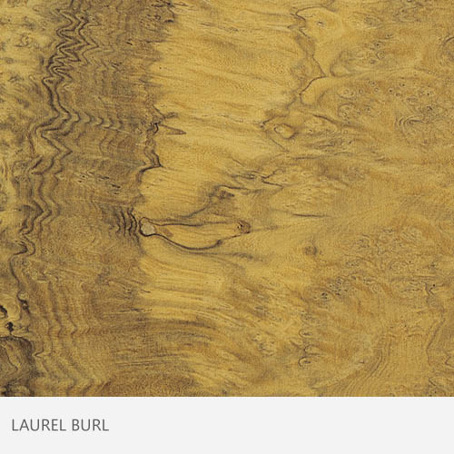 Laurel Burl