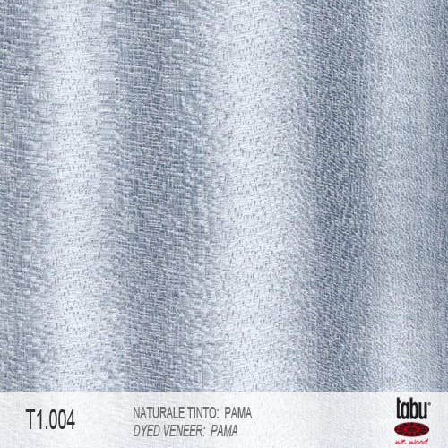 t1.004