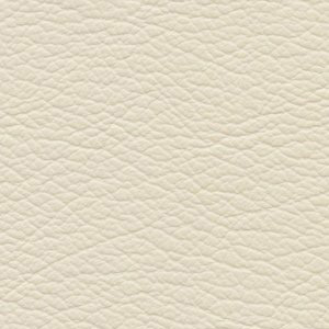 Leather Ivory